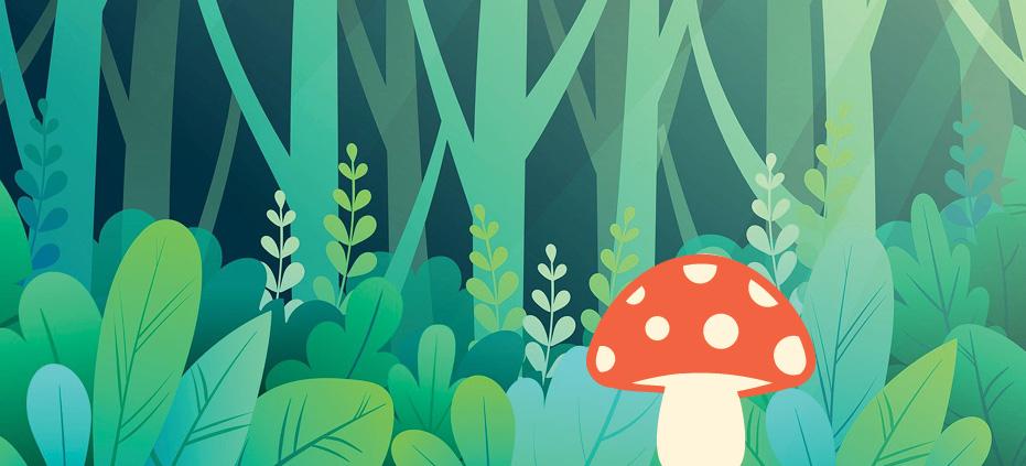 Woods with mushroom